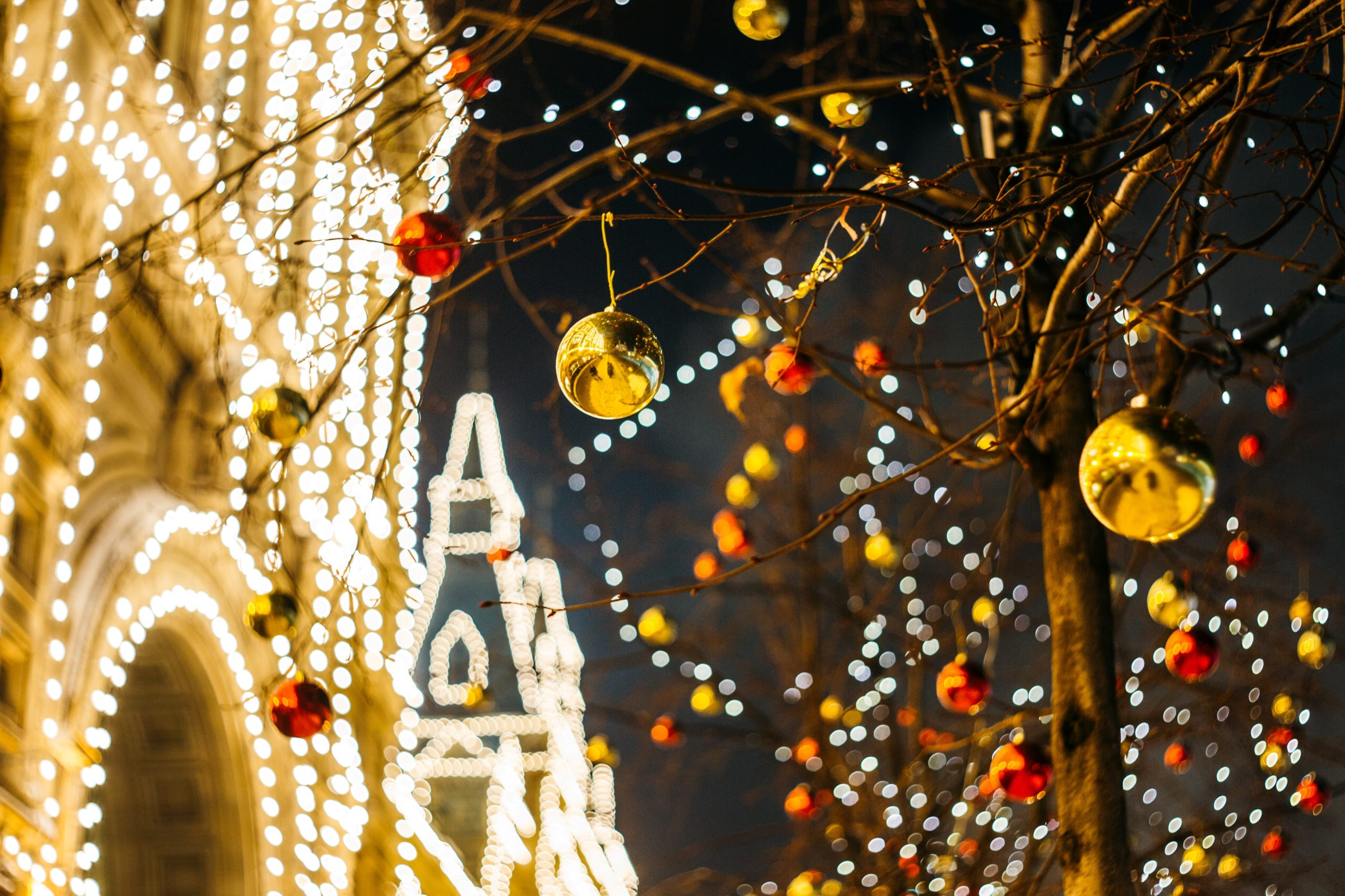 🎄✨南加聖誕季Drive-Thru 燈光秀攻略