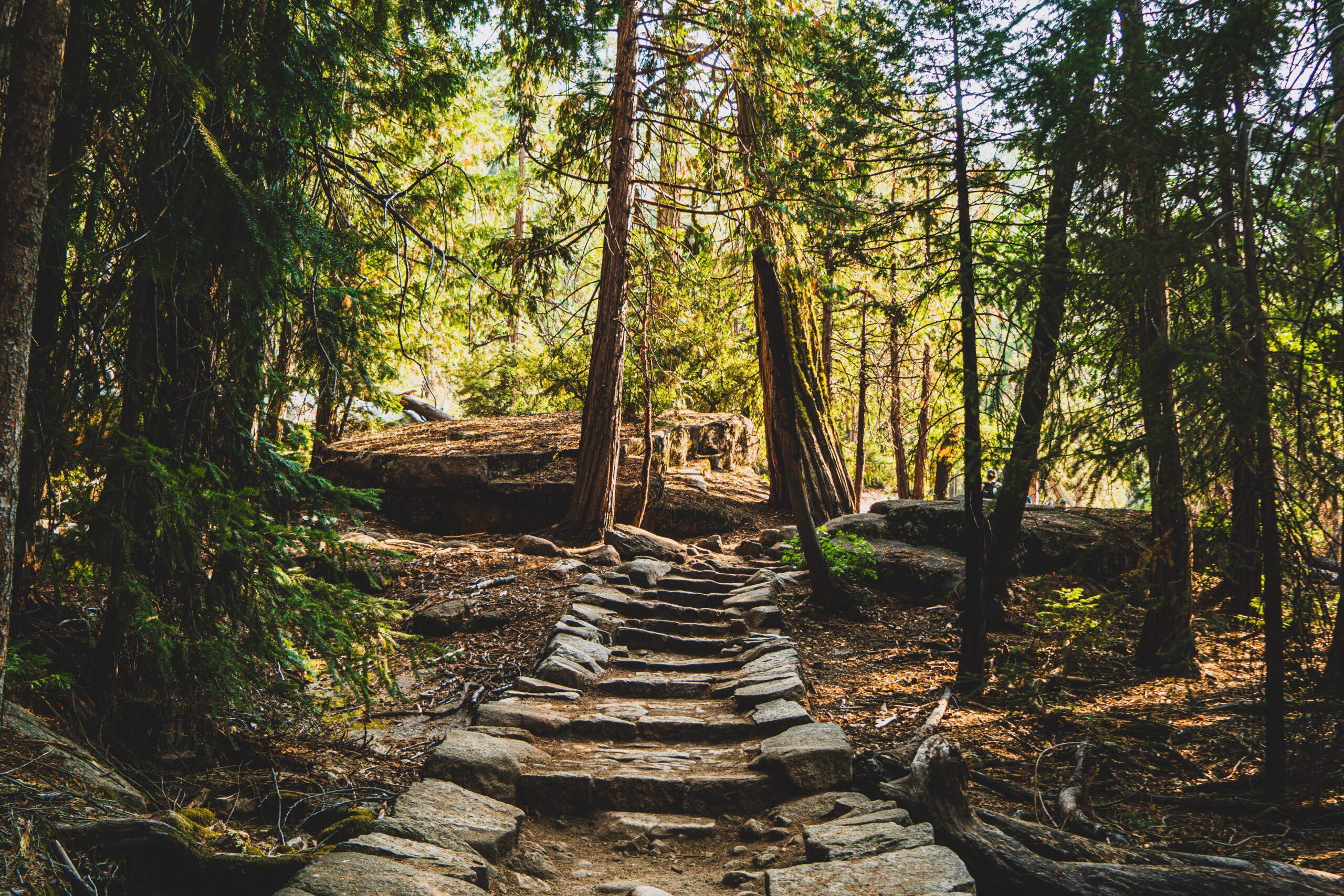 洛杉磯親子遊好去處| 有水有樹蔭Dog Friendly的Hiking勝地Michael D. Antonovich Trail