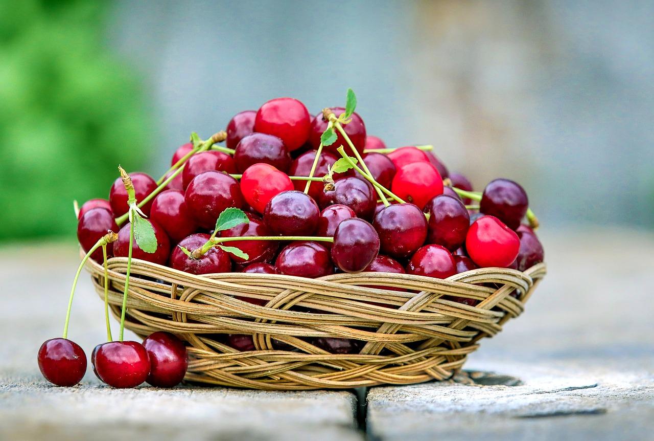 【盘点南加樱桃 U-Pick 果园】南加樱桃采摘季开始啦!带上娃儿家人摘樱桃去啰~