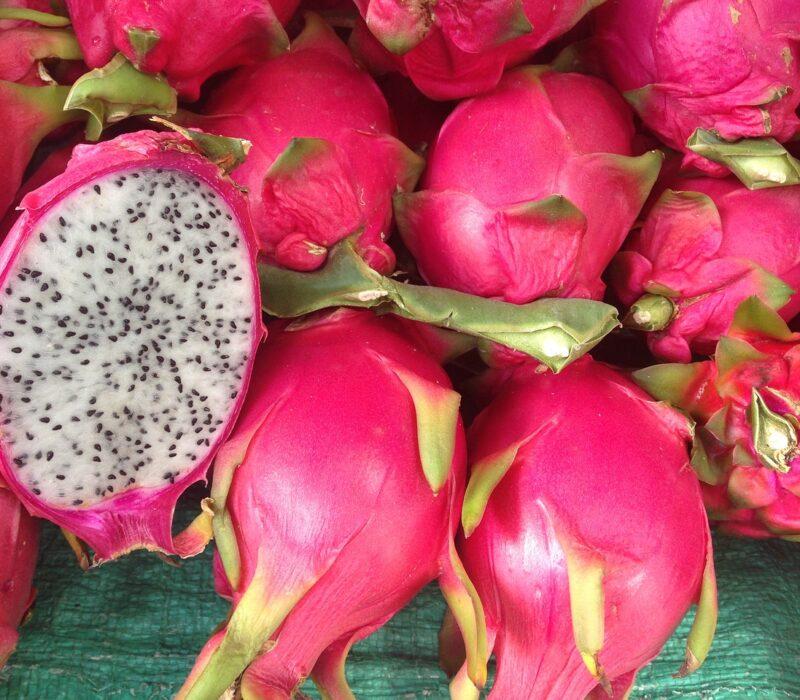 dragonfruit, fruit, dragon
